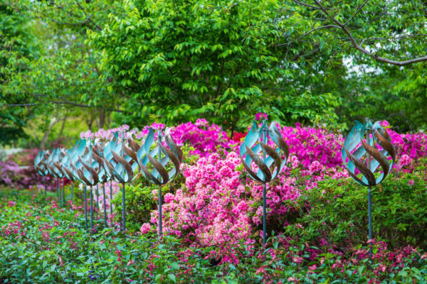 Dallas Arboretum | Paseo de Flores West