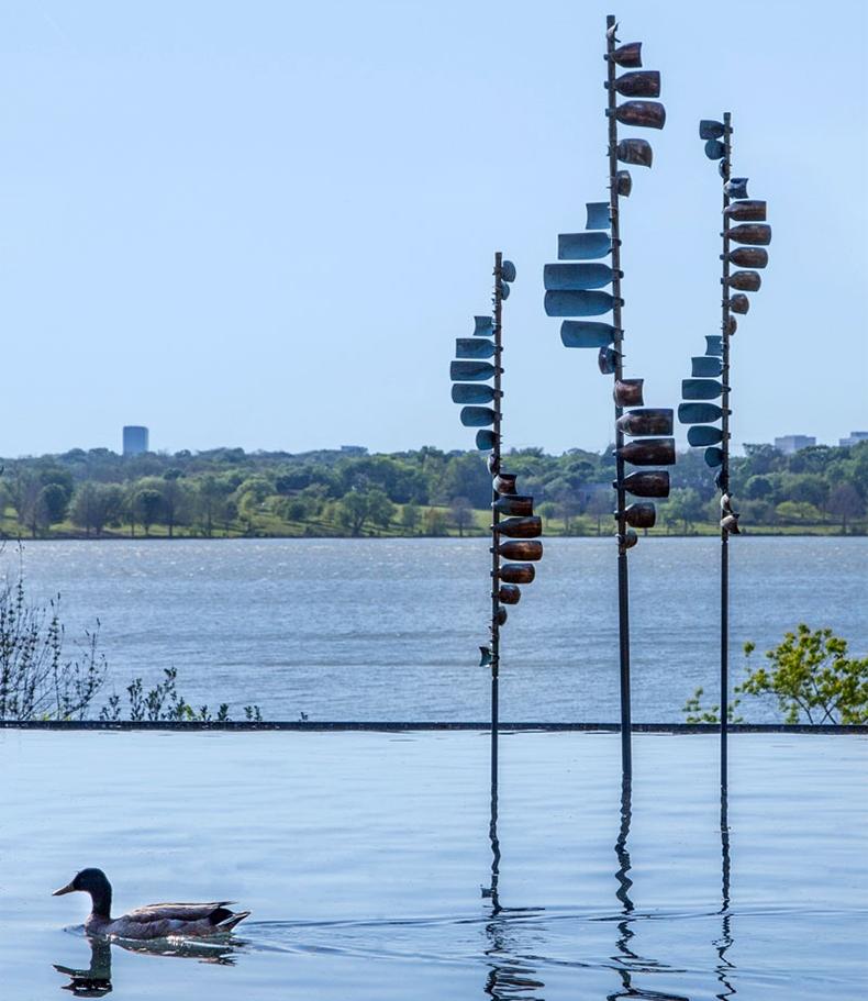 Dallas Arboretum | Women's Garden - Infinity Pool